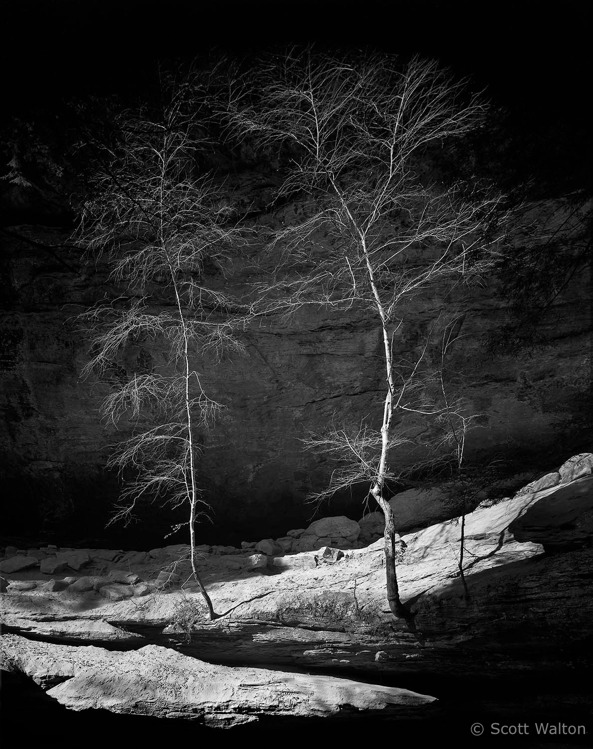 two-trees-old-mans-cave-hocking-hills-state-park-ohio-V2.jpg
