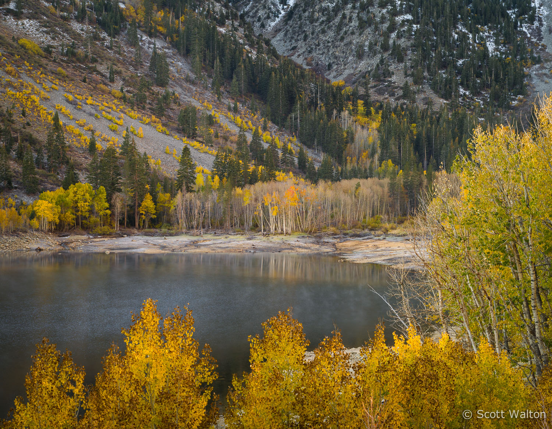 aspen-autumn-lake-dawn-lundy-canyon-california.jpg
