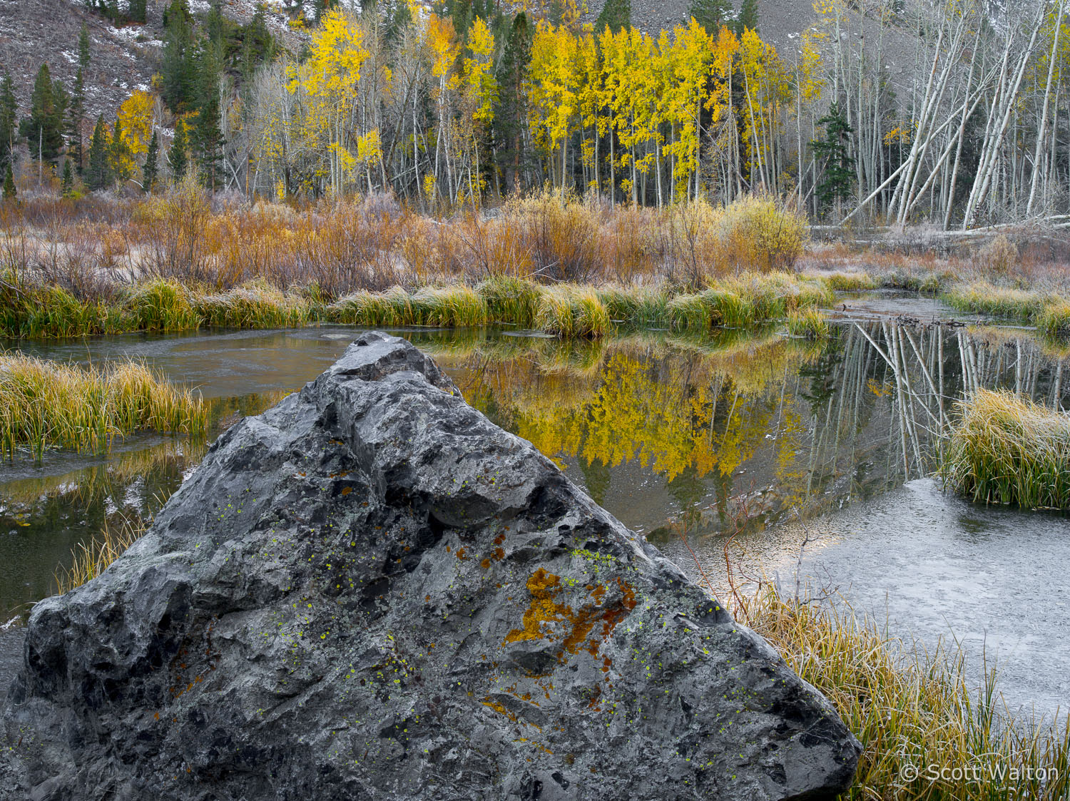 aspen-rock-ice-pond-lundy-canyon-california.jpg
