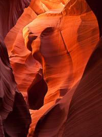 the-buffalo-lower-antelope-canyon-arizona.jpg