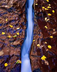 blue-ribbon-the-subway-zion-national-park-utah.jpg