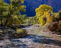 tranquil-morning-virgin-river-zion-national-park-utah.jpg