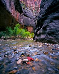 virgin-river-polished-rocks-the-narrows-zion-national-park-utah.jpg
