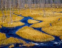 blue-braided-stream-yellowstone-national-park-wyoming.jpg