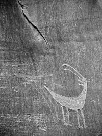 petroglyph-monument-valley-navajo-tribal-park-arizona.jpg