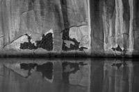 ferns-canyon-varnish-neon-canyon-utah.jpg