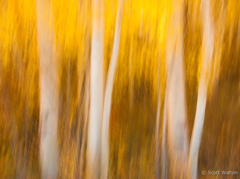 motion-blur-abstract-impression_1080420.jpg