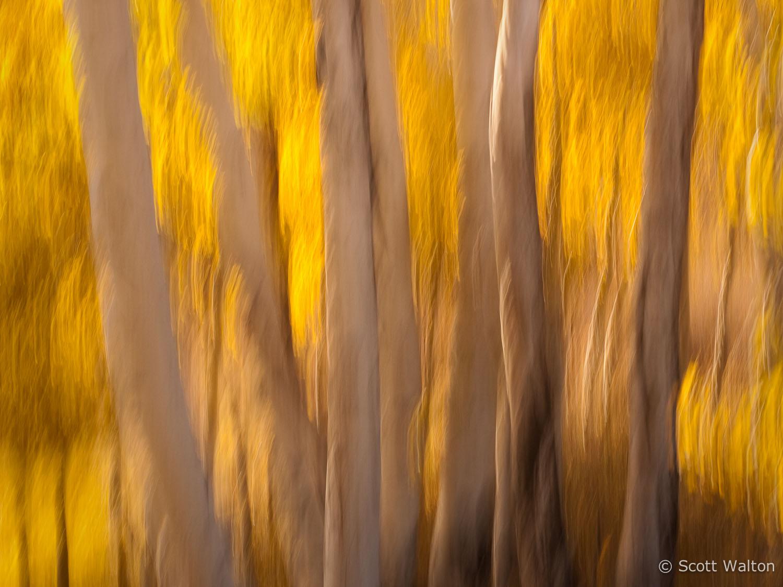 motion-blur-abstract-impression_1080569.jpg