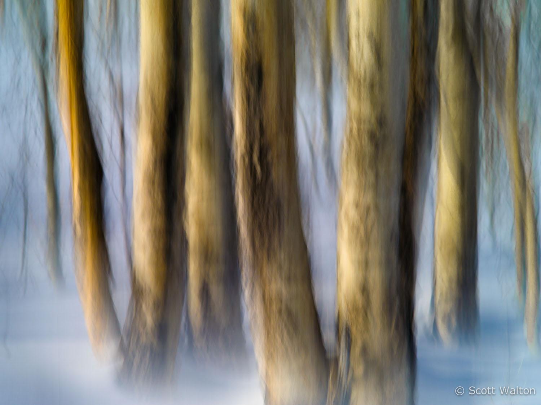 motion-blur-abstract-impression_IGP1161.jpg