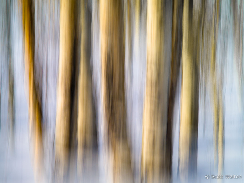 motion-blur-abstract-impression_IGP1166.jpg