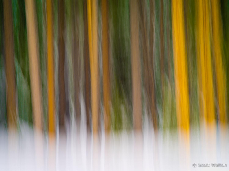 motion-blur-abstract-impression_IGP1386.jpg