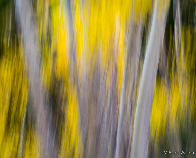 motion-blur-abstract-impression_IGP6115.jpg