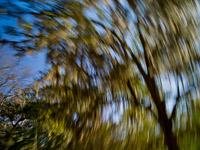 motion-blur-abstract-impression_IGP0149.jpg