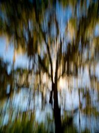 motion-blur-abstract-impression_IGP0175.jpg