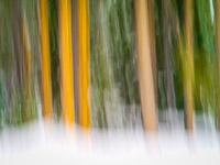 motion-blur-abstract-impression_IGP1378.jpg
