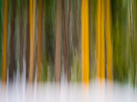 motion-blur-abstract-impression_IGP1387.jpg
