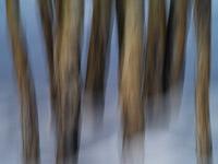 motion-blur-abstract-impression_IGP1757.jpg