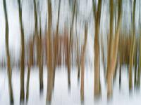 motion-blur-abstract-impression_IGP1853.jpg