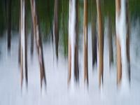 motion-blur-abstract-impression_IGP1943.jpg